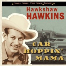Hawkshaw Hawkins-bcd16988